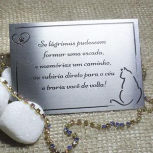 Frase – Gato