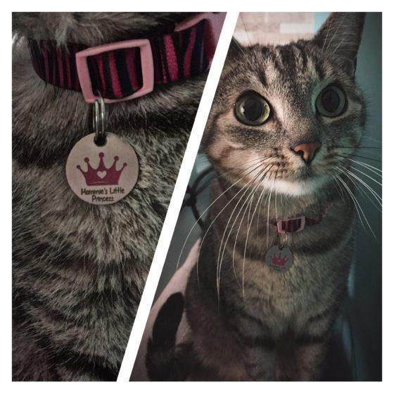 """""""Eu e minha gatinha adoramos a atenção que nos deram, e a plaquinha ficou demais... além disso ficamos muito felizes em ajudar os miaus sem lar nas ONG's :D"""" - Beatriz, mãe da Fuinha e do Koda"""