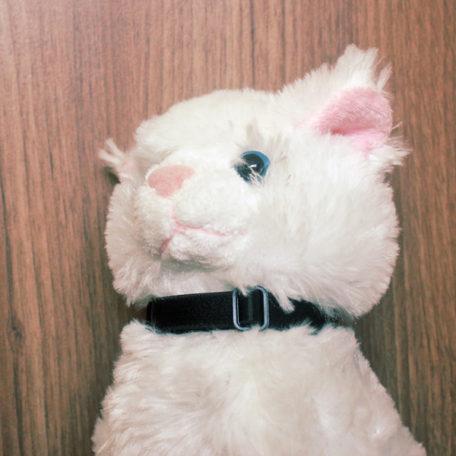 Coleira Comfy Cat Gatinho Branco Preta