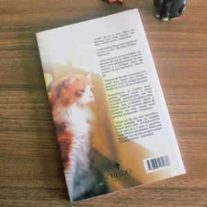 A História de um Gato