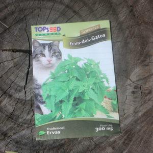 semente catnip erva dos gatos
