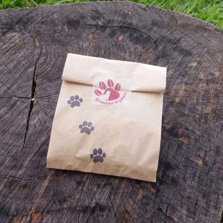 semente-de-graminha-organica-para-gatos-trigo-aveia