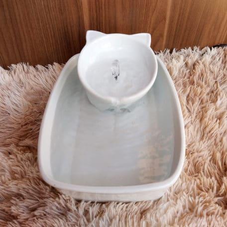 fonte-de-porcelana-ceramica-em-fomato-gatinho-para-gatos-2